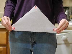 parchment cone 1
