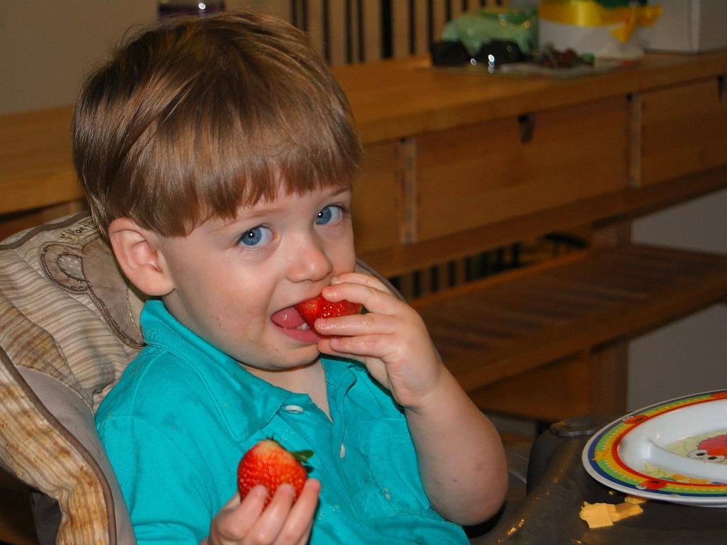 Munchkin Meals: 20 Months