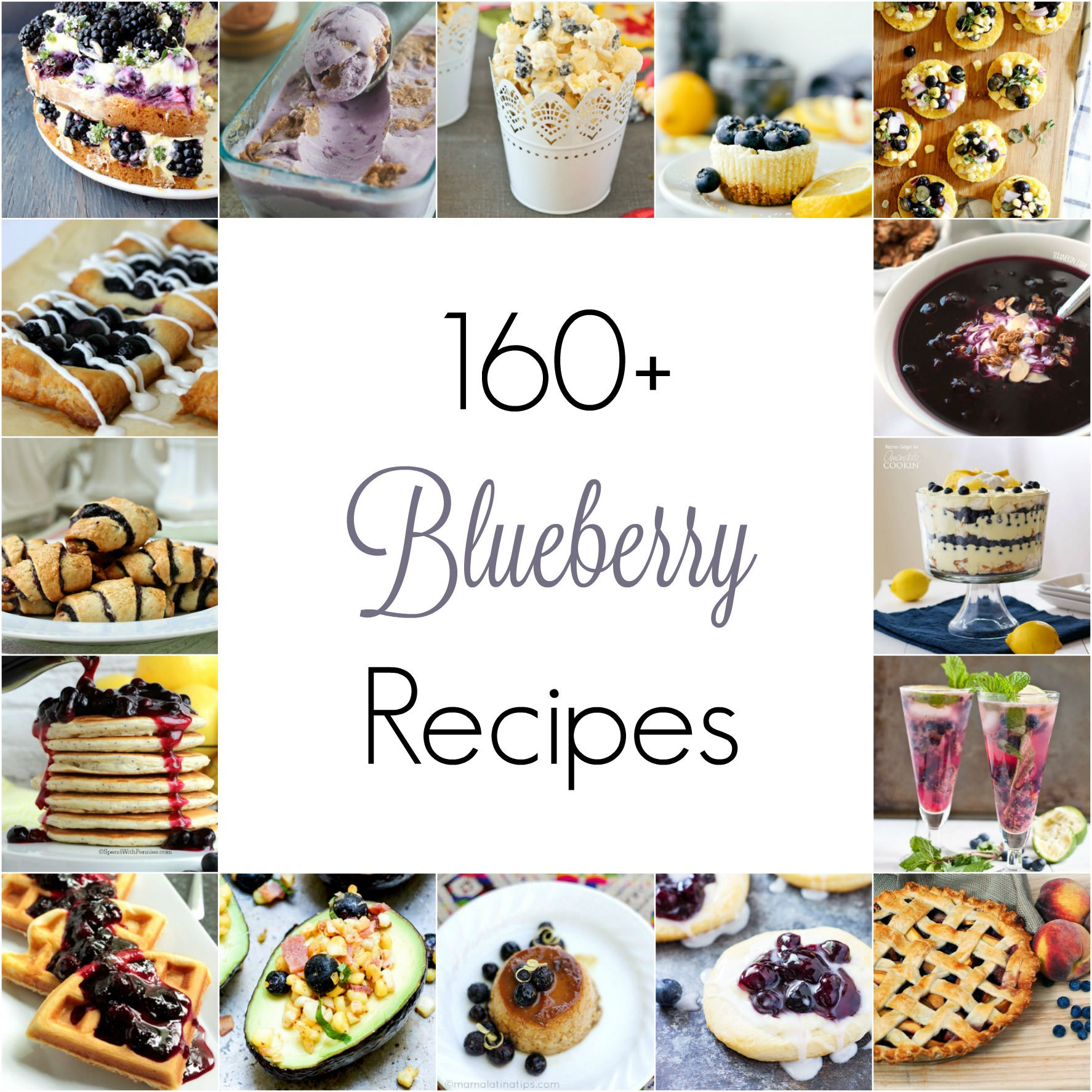 July 10th is National Blueberry Picking Day, so I've compiled over 160 recipes, sweet and savory, to help you use those blueberries.