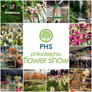 A Peek at the 2017 Philadelphia Flower Show: Holland