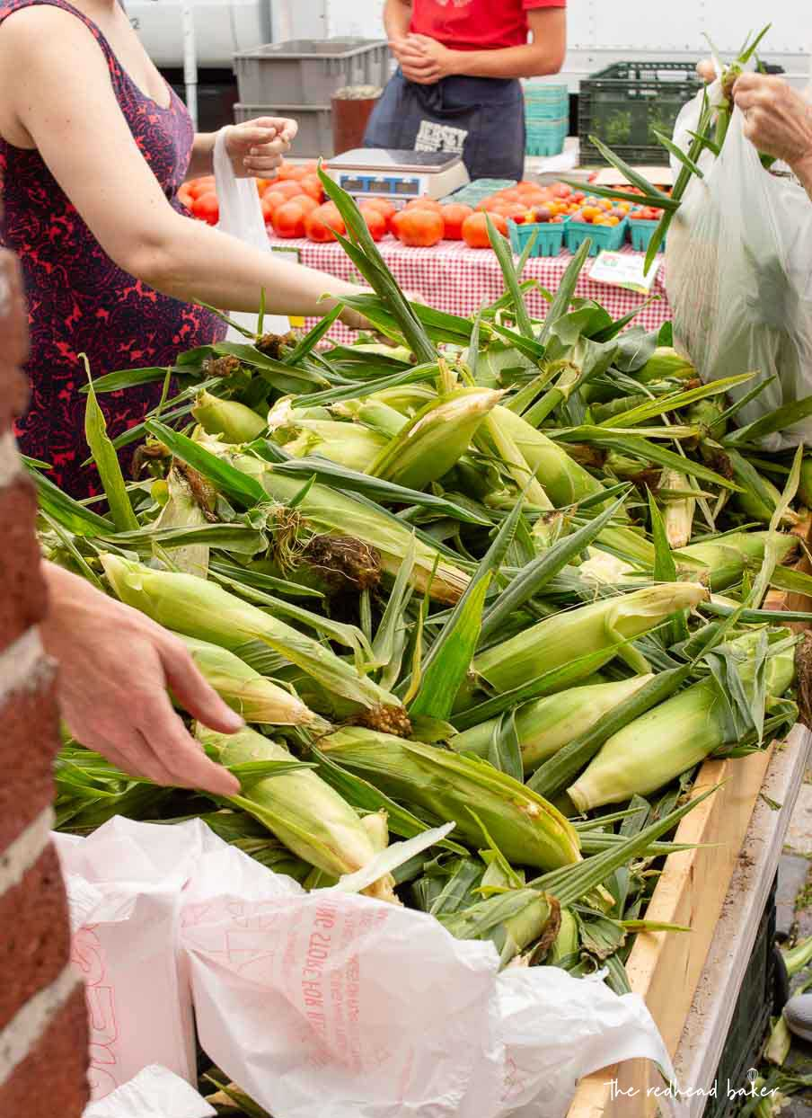A bin of fresh corn on the cob at Headhouse Farmers Market in Philadelphia, PA.