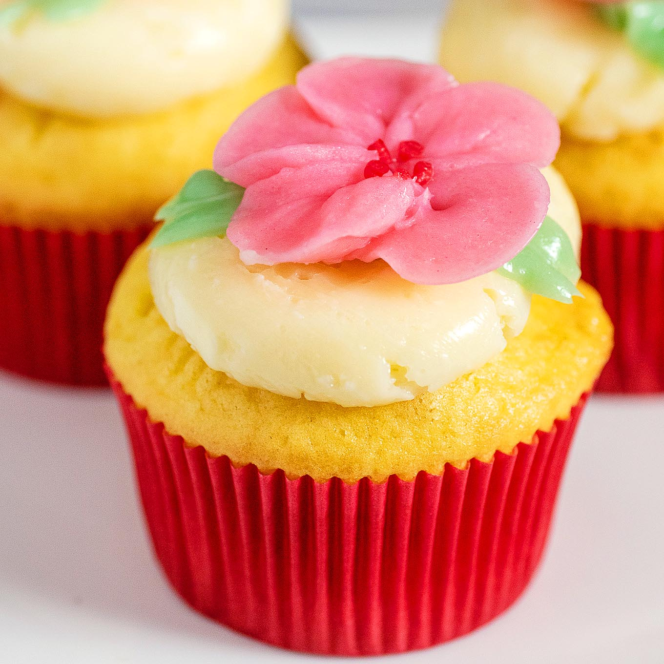 A vanilla cupcake iced with swiss buttercream and topped with a buttercream cherry blossom