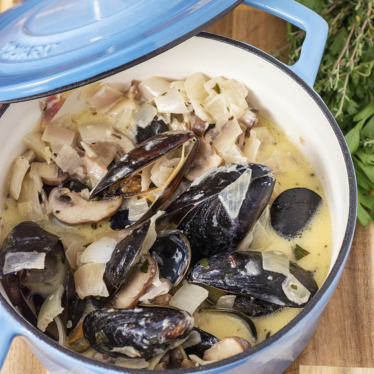 Looking down into a mini Dutch oven of Normandy-style mussels in cider sauce, with a handful of parsley and thyme behind the pot